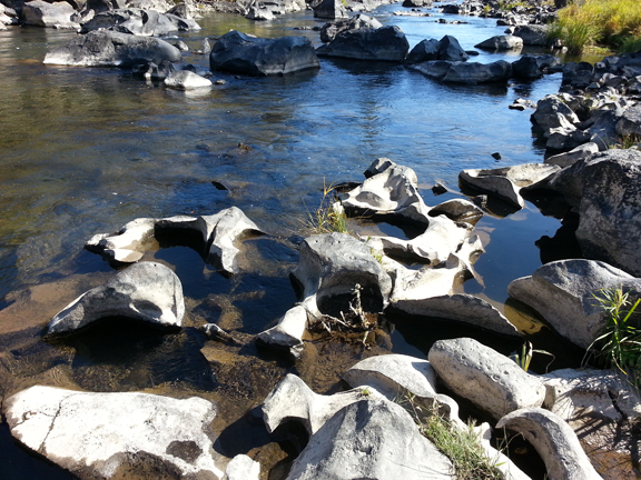 Sawyer Park, Bend, Oregon - River tide pools